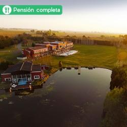 Verano en Pampas de Areco -...